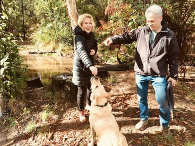 on a walk on a pooches and pinot dog friendly wine tour in the yarra valley