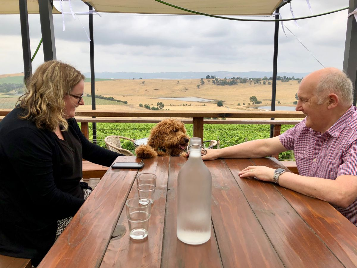 view aty Helen and Joeys on a Pooches and Pinot wine tour