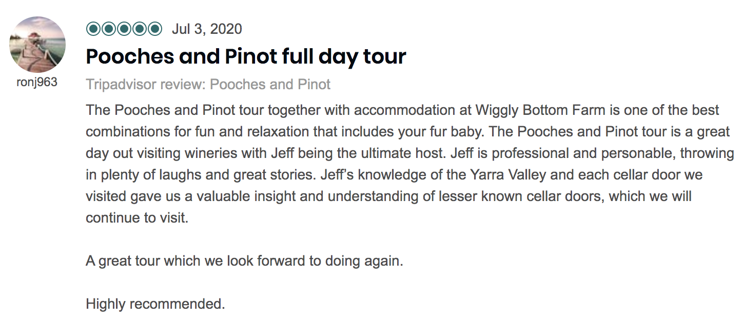 Another 5-star review for Pooches & Pinot on Tripadvisor