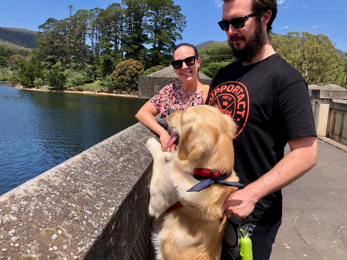 enjoy a dog walk on a Pooches and Pinot birthday dog-friendly Yarra Valley wine tour