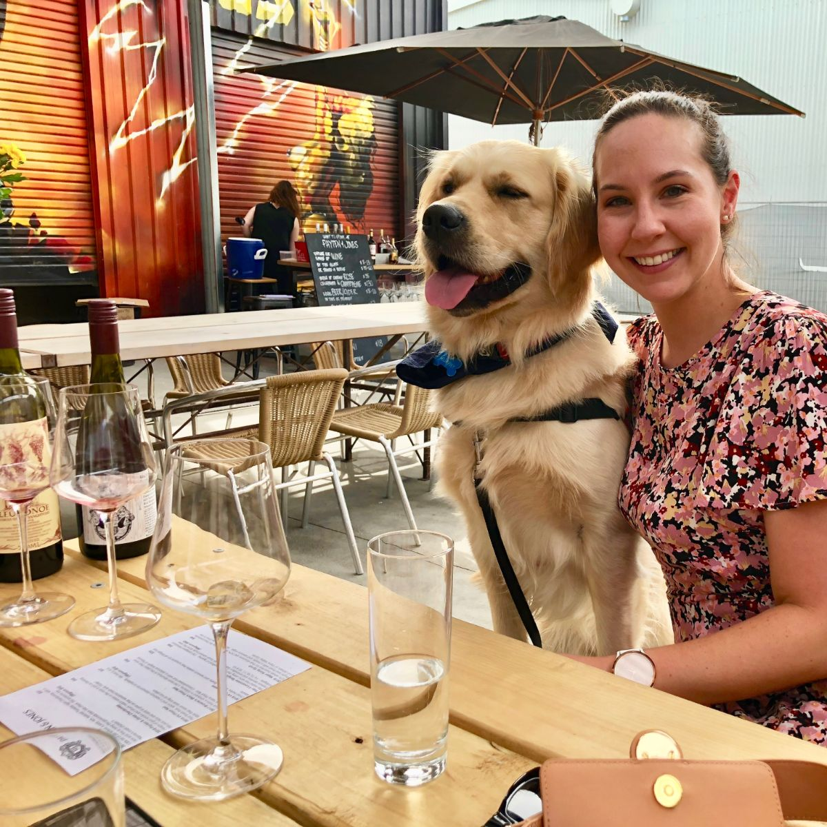 private wine tastings on a dog-friendly Pooches and Pinot yarra valley wine tour
