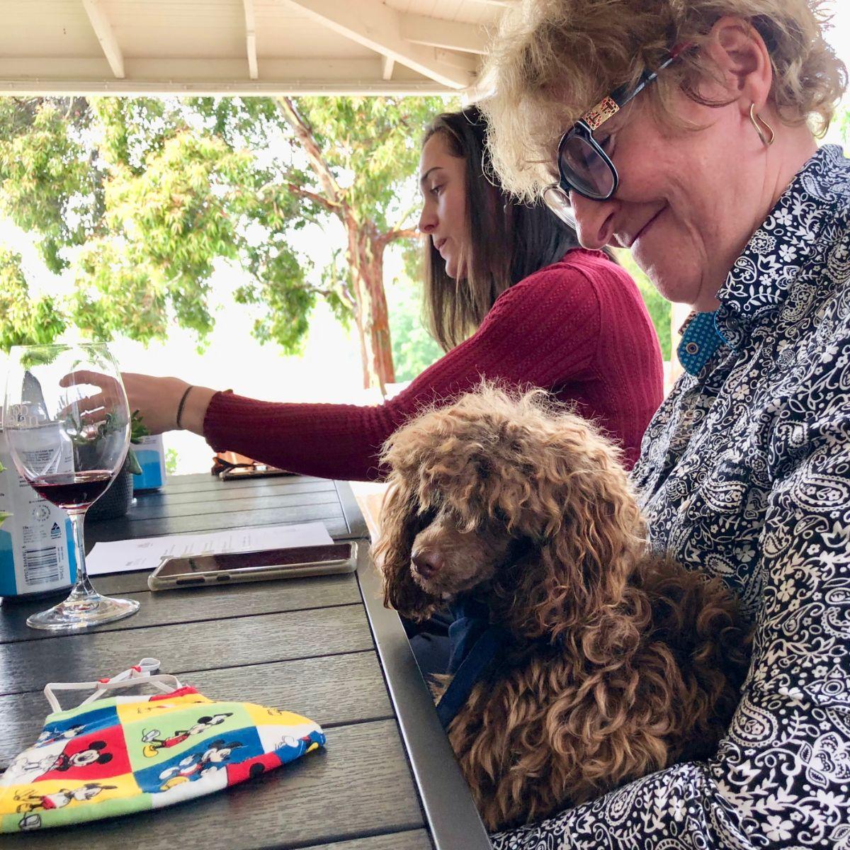 dog-friendly wine tour yarra valley