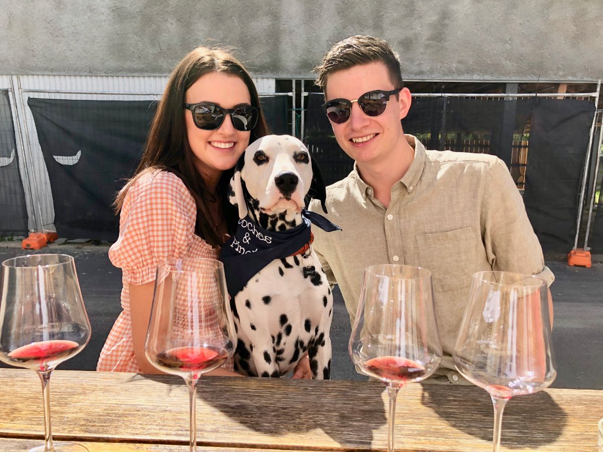 dog enjoying a wine tasting with pooches and pinot tours
