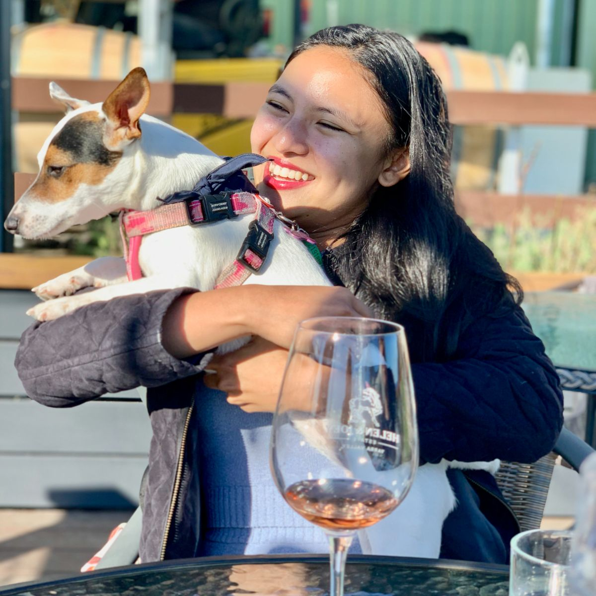 pooches & Pinot dog friendly yarra valley wine tasting tour